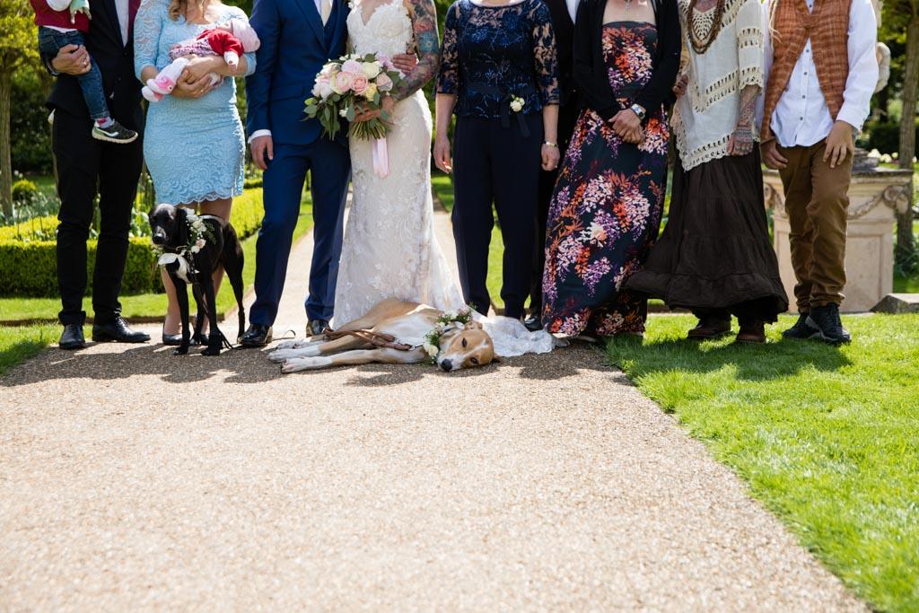 dog friendly wedding London