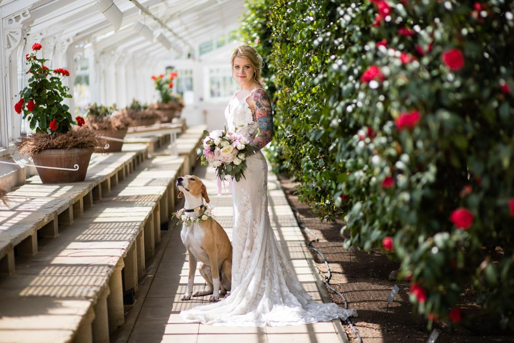 bride and her dog in Conservatory at Chiswick House & Gardens