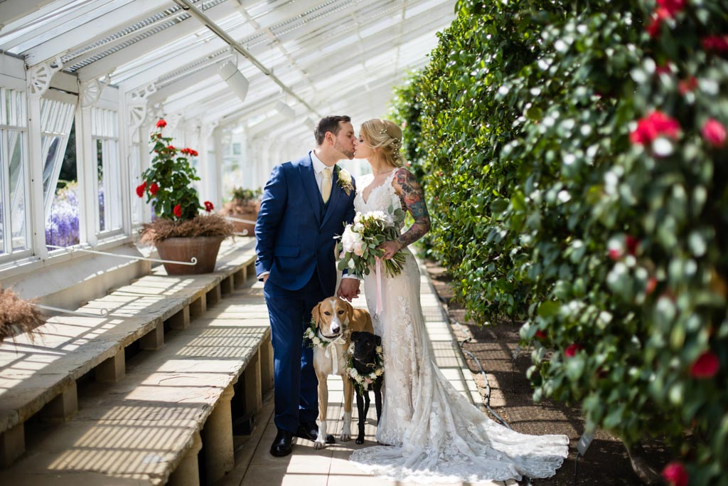 bride groom and dogs portrait at Chiswick House and Gardens Conservatory