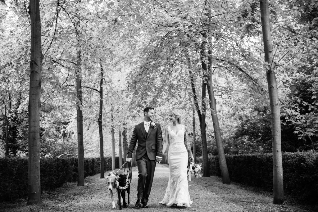 groom and bride walk with their dogs through woodland path