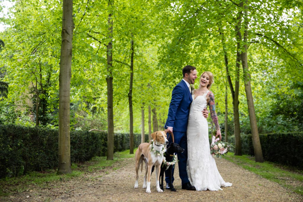 bride and groom having fun with their dogs in tow