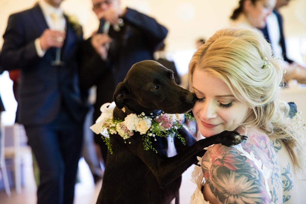 bride Maira gets hugs and kisses from her dog Sherlcok