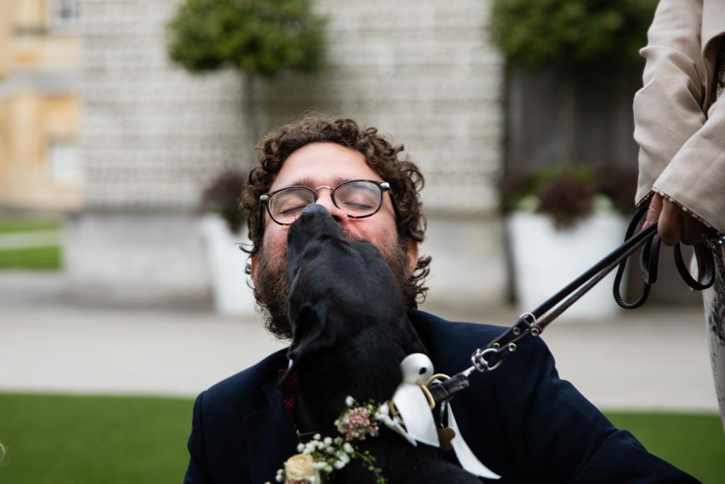 wedding dog Sherlock kisses spectacle wearing man