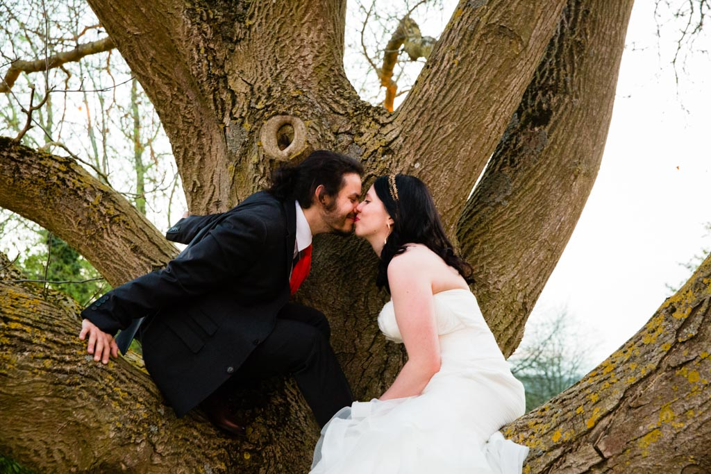bride and groom kissing in tree
